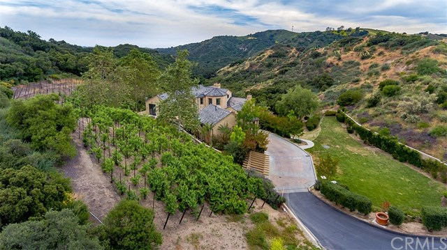 20031 Summit Trail Road Trabuco Canyon, CA 92679 - MLS #: OC17095272