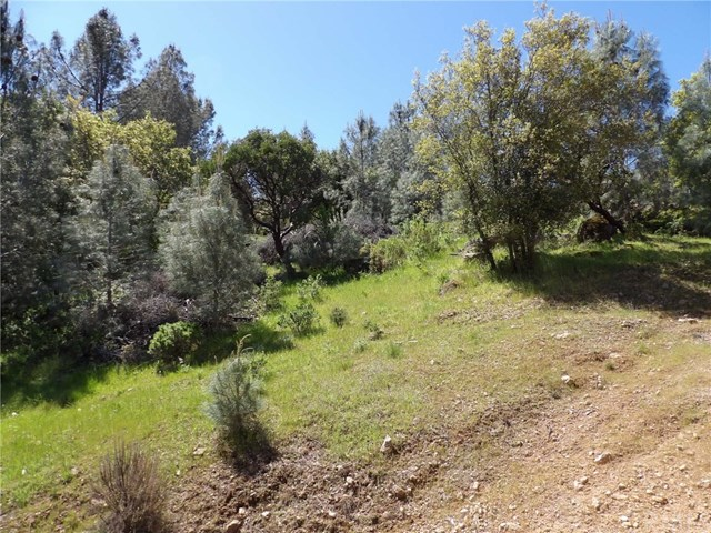 4836 Iroquois Trail Kelseyville, CA 95451 - MLS #: LC17104210